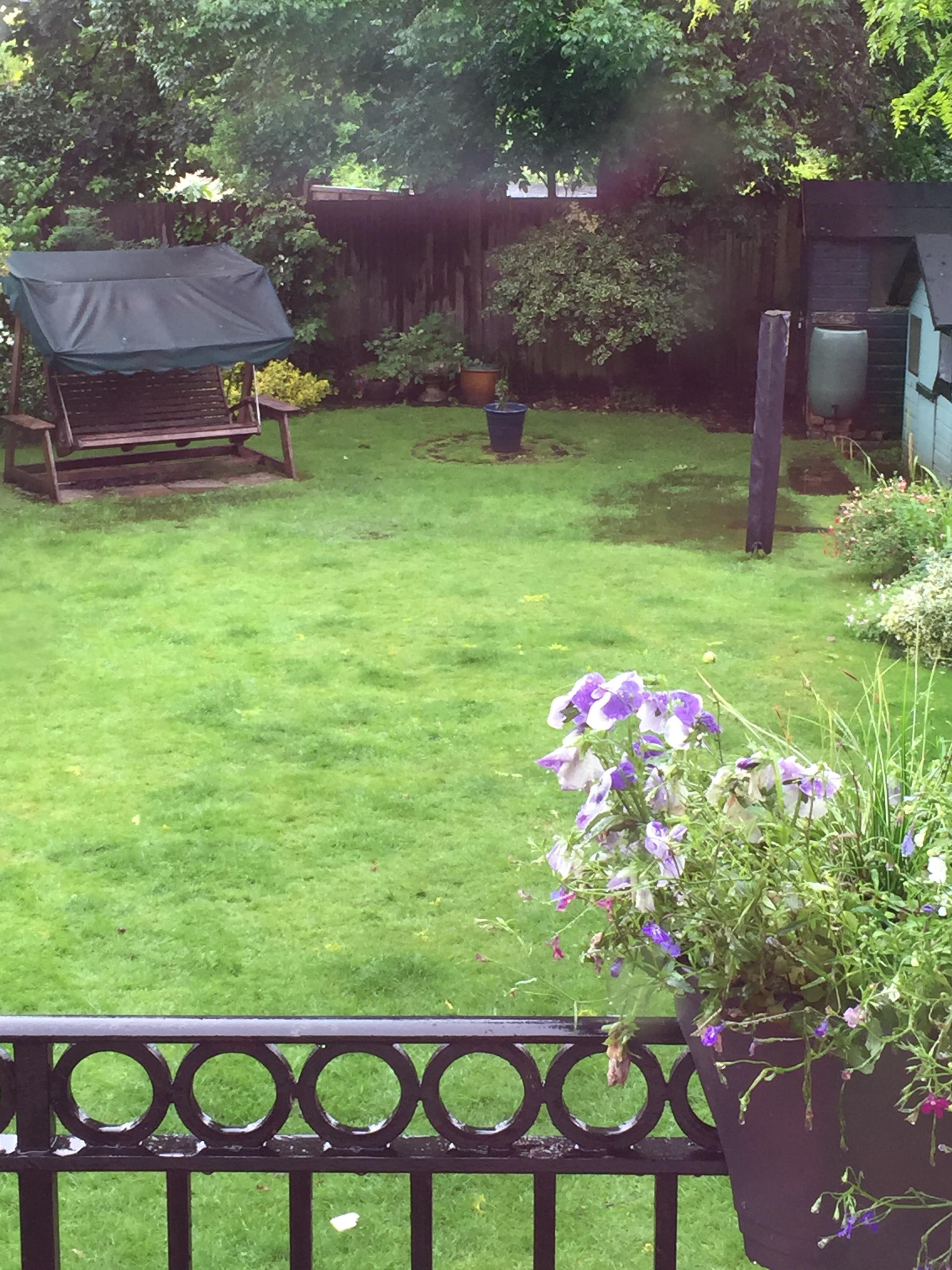 superb underground spring in backyard part 5 beginning